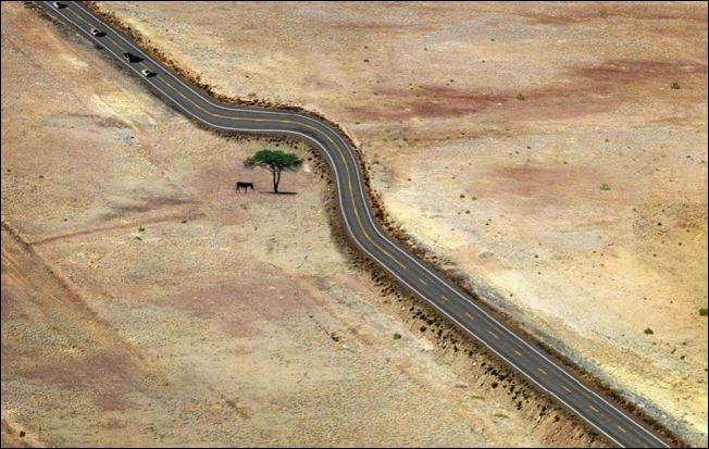 Примеры бережного отношения к природе
