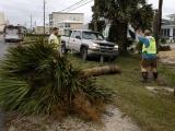 """ФОТО: ураган """"Майкл"""" со скоростью ветра 245 км/час достиг побережья Флориды"""