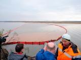 Багровые реки: в Норильске разлилось 20 тысяч тонн дизтоплива - введен режим ЧС