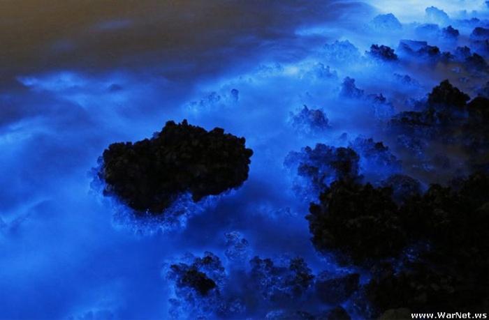 Удивительное природное явление на побережье Гонконга