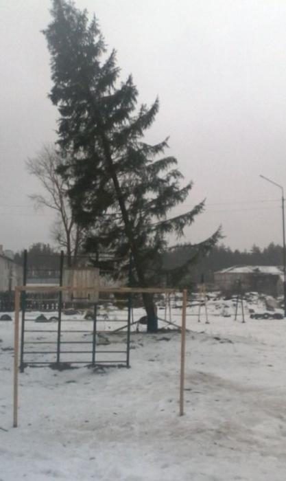 Новогодняя елка в поселке Лашма Рязанской области