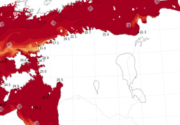 В Финском заливе зарегистрировали самую высокую температуру воды за всю историю наблюдений