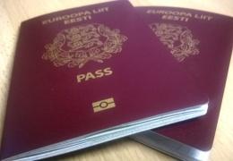 Комиссия Рийгикогу поддержала упрощенный порядок получения гражданства детьми серопаспортников