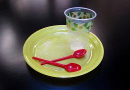 Еврокомиссия планирует запретить одноразовые пластмассовые изделия в ЕС