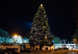 Новогоднего праздника в Нарве не будет, но по городу пустят музыкальный автобус