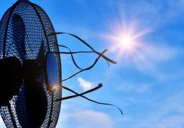Жители Эстонии хотят прохлады, но в магазинах возник дефицит вентиляторов