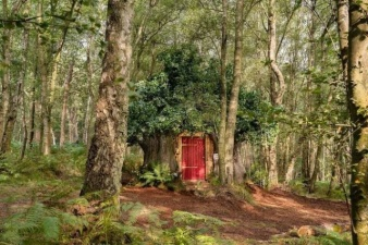 Disney построил настощий дом Винни-Пуха в английском лесу и в нем есть особые правила