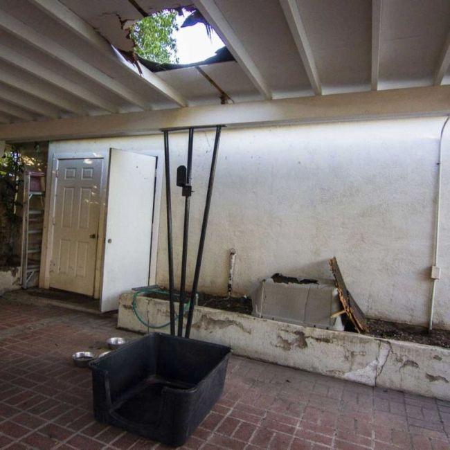 Пакет конопли, упавший с неба, пробил крышу и разнес в осколки собачий домик