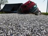 Грузовик перевозивший 20 тонн рыбы перевернулся в Германии