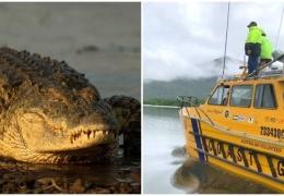 В Австралии крокодил перевернул лодку и съел рыбака