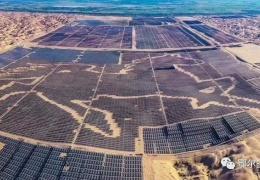 Китайская солнечная ферма попала в Книгу рекордов Гиннесса из-за панелей, формирующих лошадь