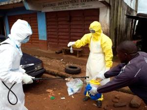 По прогнозам ВОЗ, лихорадка Эбола может поразить до 20 тысяч человек к концу 2014 года