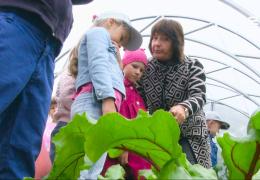 Нарвский детский сад Päikene использует теплицу в качестве языкового пособия для малышей.
