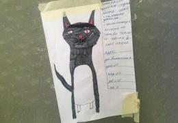 Девочка нарисовала самый милый фоторобот, чтобы найти пропавшего кота