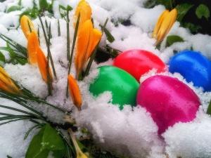 К пасхальным выходным вновь ожидается снег