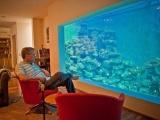 Израильтянин создал самый большой в стране аквариум для гостиной