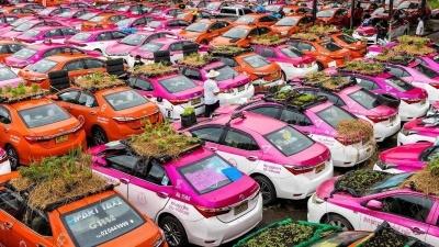 Простаивающие тайские такси становятся зелеными мини-огородами