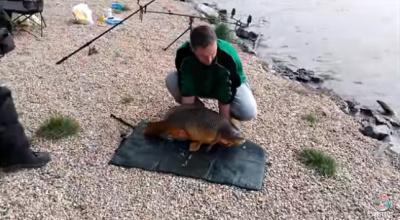 Карп сбежал от рыбака, пока тот фотографировался с добычей