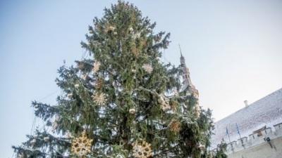 Снега на католическое Рождество в Эстонии не обещают