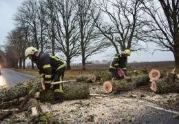 Из-за шторма в Эстонии обесточены тысячи домохозяйств, больше всего – в Харьюмаа