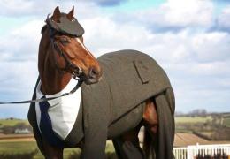 Первый в мире костюм-тройка для лошади