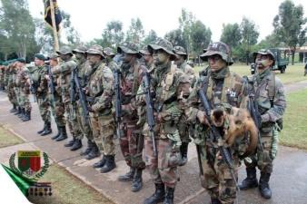 Солдаты армии Парагвая маршируют на параде со своими животными