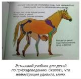 Эстонский учебник для детей