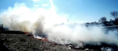 Сжигание сухой прошлогодней травы опасно и наказуемо