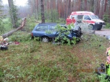 В Вырумаа автомобиль въехал в дерево, молодой водитель получил тяжелые травмы