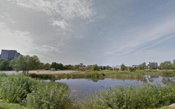 В Нарве в пруду на улице Ору утонул мужчина