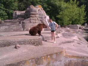 В варшавском зоопарке пьяный мужчина прыгнул в вольер к медведю