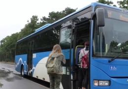 Нарвитяне с боями пробиваются на свои дачи из-за ограничений на число пассажиров в автобусе