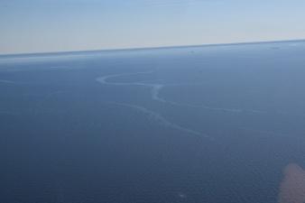 В Нарвском заливе возле Тойла растекается топливное масло