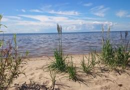 В Чудском озере упал уровень воды
