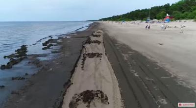Отдыхающие на усть-наровском пляже негодуют: когда уберут водоросли?