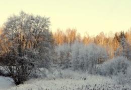 В ближайшие дни в Эстонии будет небольшой мороз