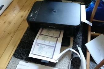 В Германии девушка напечатала деньги, чтобы купить себе автомобиль