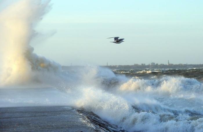 Спасатели рекомендуют жителям Эстонии не выходить на улицу