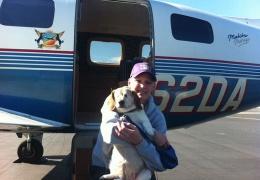 Эти пилоты спасают животных от гибели
