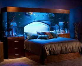 Удивительные аквариумы