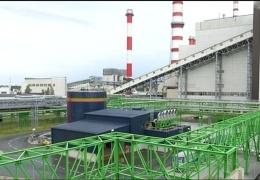 Правительство поддержало частичную замену сланца на биомассу на Нарвских электростанциях