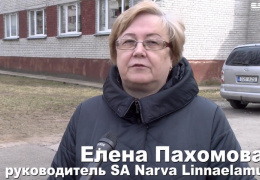 SA Narva Linnaelamu о ситуации с Симой Жирновой