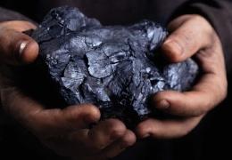 Происхождение угля остается загадкой