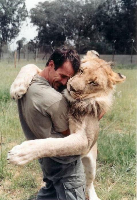 Уникальная дружба человека и льва