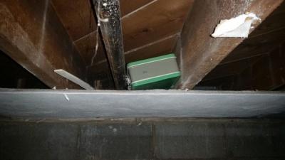 Неожиданная находка, обнаруженная во время ремонта в подвале
