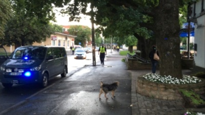 В Нарве на паркове возле машины нашли гранату