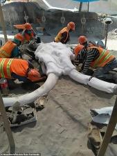 В Мексике случайно нашли гигантское кладбище мамонтов