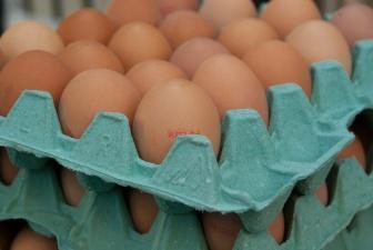 Ветеринарный департамент предупреждает о возможном заражении сальмонеллой куриных яиц