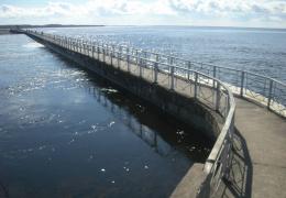 На Нарвском водохранилище пограничники спасли жителей Петербурга