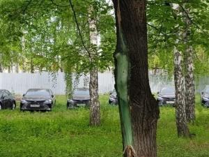 В лесу нашли десятки новых иномарок, купленных для правительства